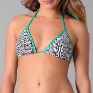 Bikini Hannah Davis