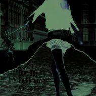 Lingerie dim 2000