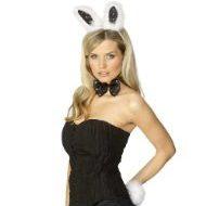 Bunny set costume obsessive rose costumes lingerie