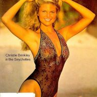 Christie Brinkley lingerie