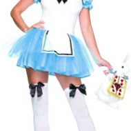 Costume princesse enchantee leg avenue bleu costumes teenagers