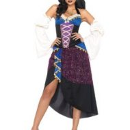 Costumes costume 4 pieces gypsy la diseuse de bonne aventure mauve leg avenue small