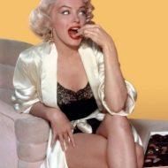 Marilyn Monroe lingerie