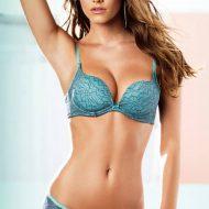 Nina agdal lingerie 2014